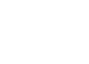 Try My Wheel